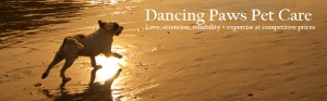 Working Dancing Paws Header 952